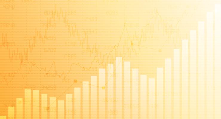 Papilon Yatırımcı İlişkileri